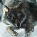 Wolf_Forever