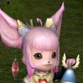 elder-pink-new.jpg